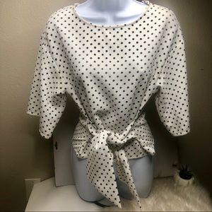 Zara Basic Collection Polka Dot Tie Blouse